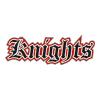 Hamburg Knights Logo