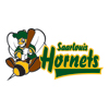 Saarlouis Hornets Logo2